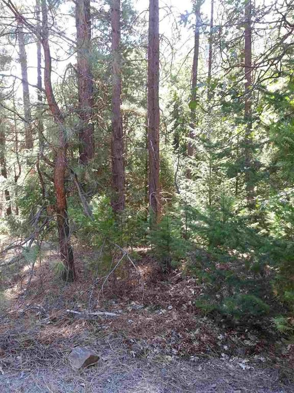Private French Creek Rd. Hwy 3 Etna Land For Sale with Creek