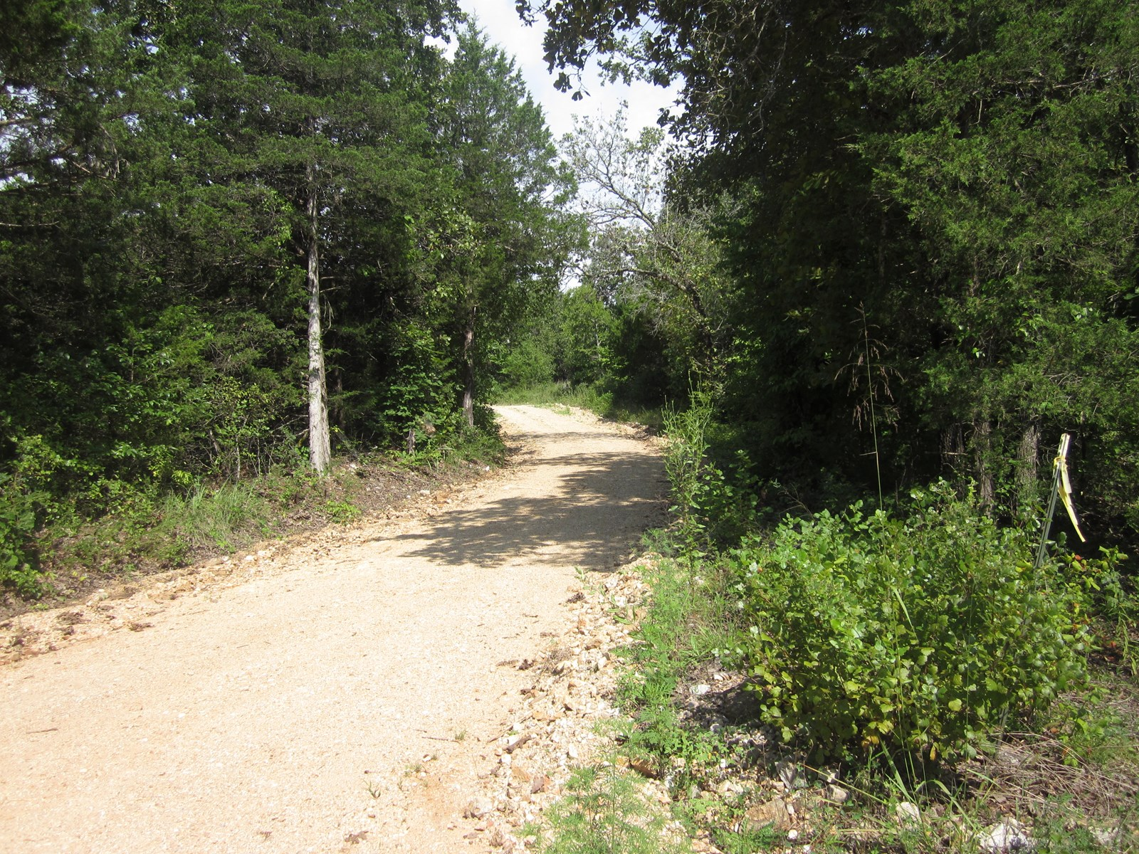 MISSOURI OZARKS HUNTING LAND FOR SALE!