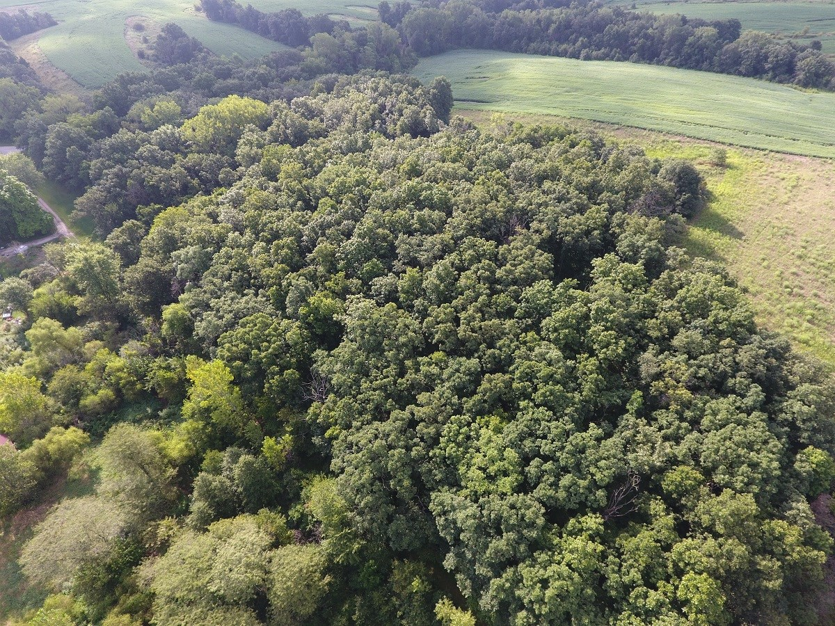 RECREATIONAL LAND FOR SALE NE MISSOURI, HUNTING LAND KNOX CO