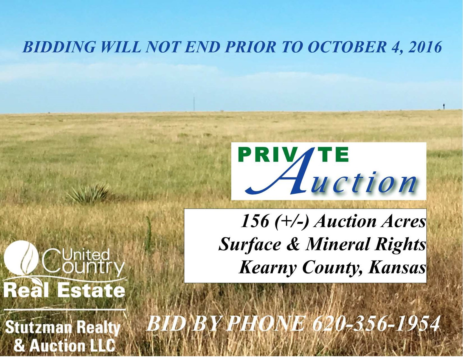 156 +/- AUCTION ACRES SURFACE & MINERAL RIGHTS