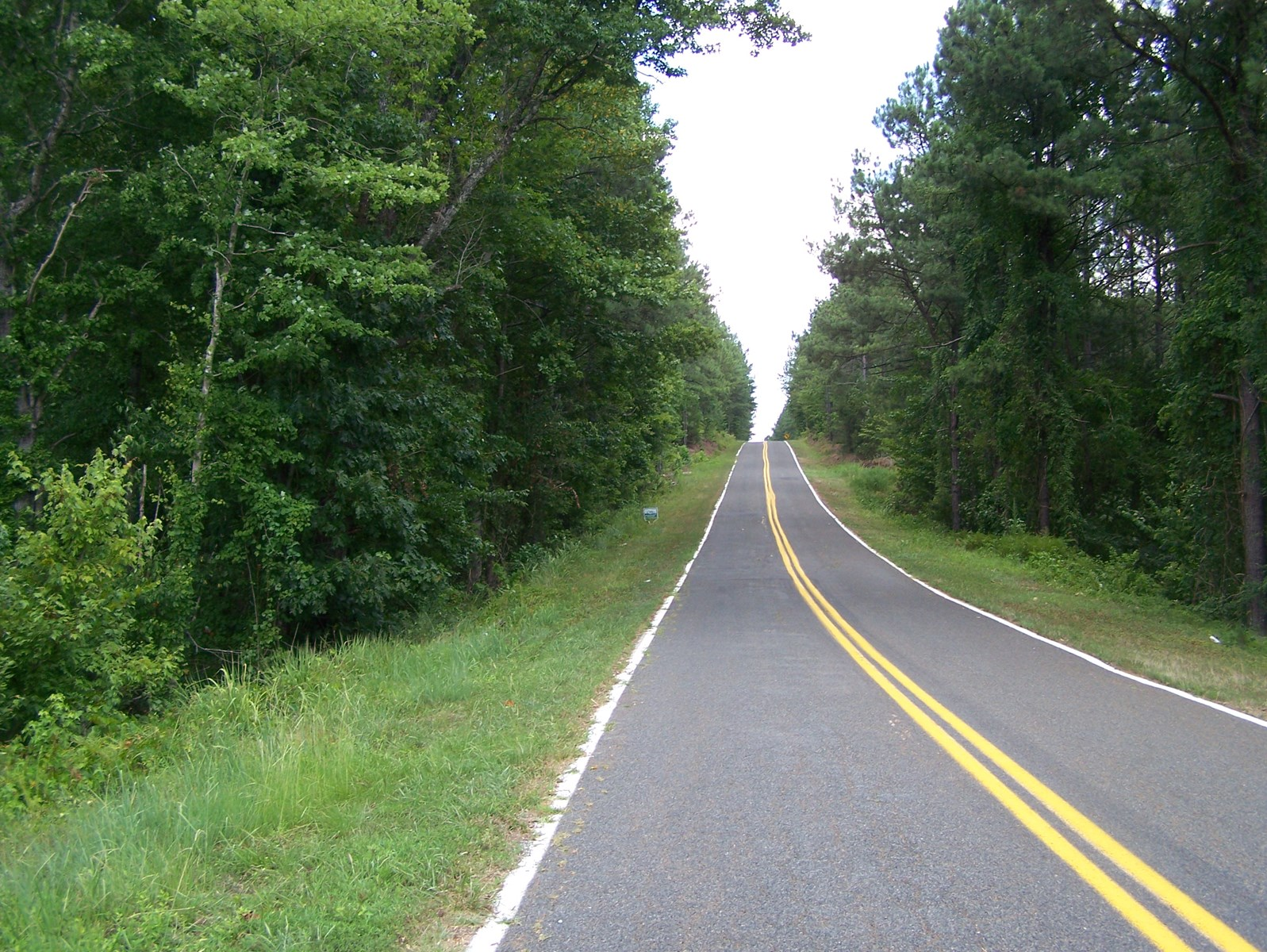 3 WOODED ACRES IN BLACKSTOCK, SC