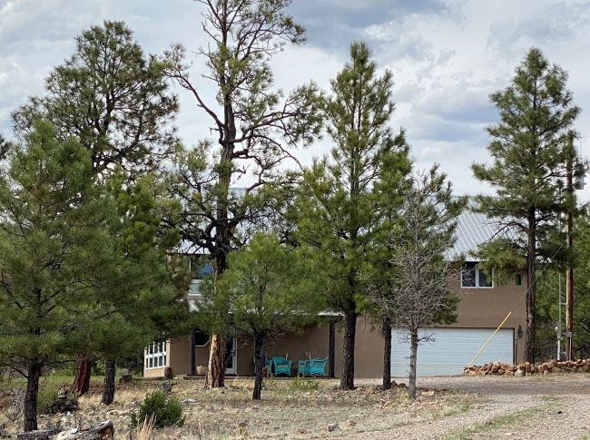 HERON LAKE HOMES FOR SALE NORTHERN NEW MEXICO CHAMA CABINS