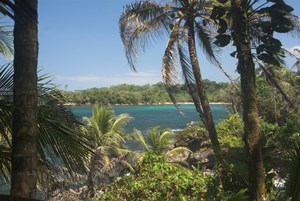 OWN YOUR OWN  EXOTIC BOCAS DEL TORO CARIBBEAN ISLAND!