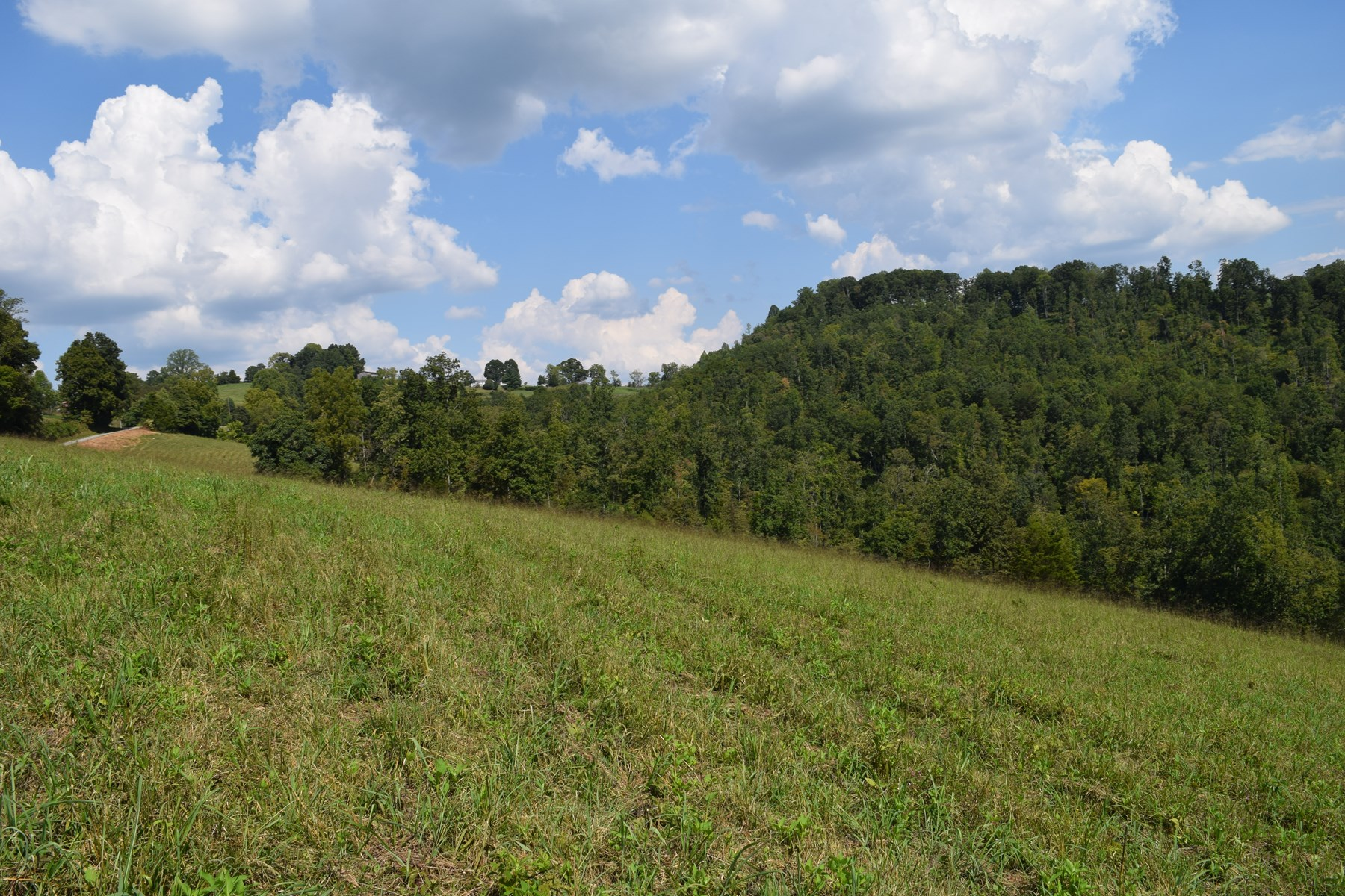EAST TN LAND FOR SALE CLAIBORNE COUNTY/ TAZEWELL TENN 37879