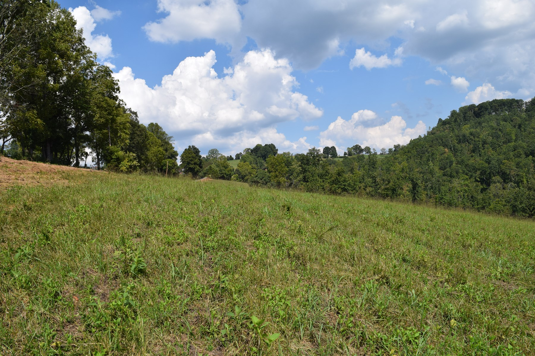 VACANT LAND FOR SALE IN EAST TENNESSEE/ CLAIBORNE COUNTY
