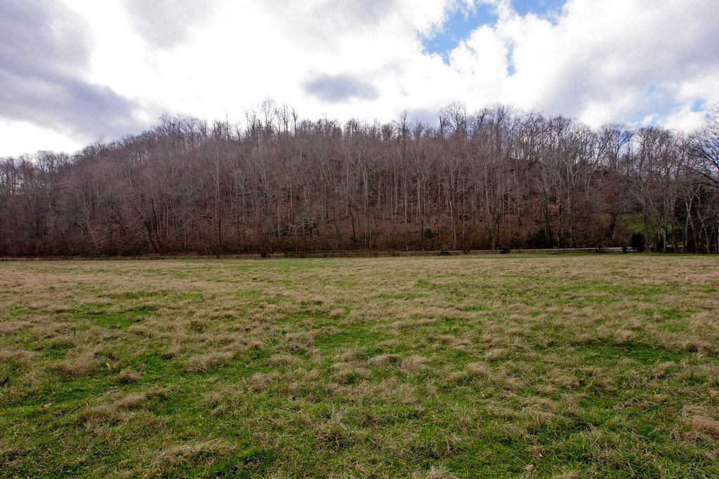 Pristine 64 Acre Farm in Franklin, TN