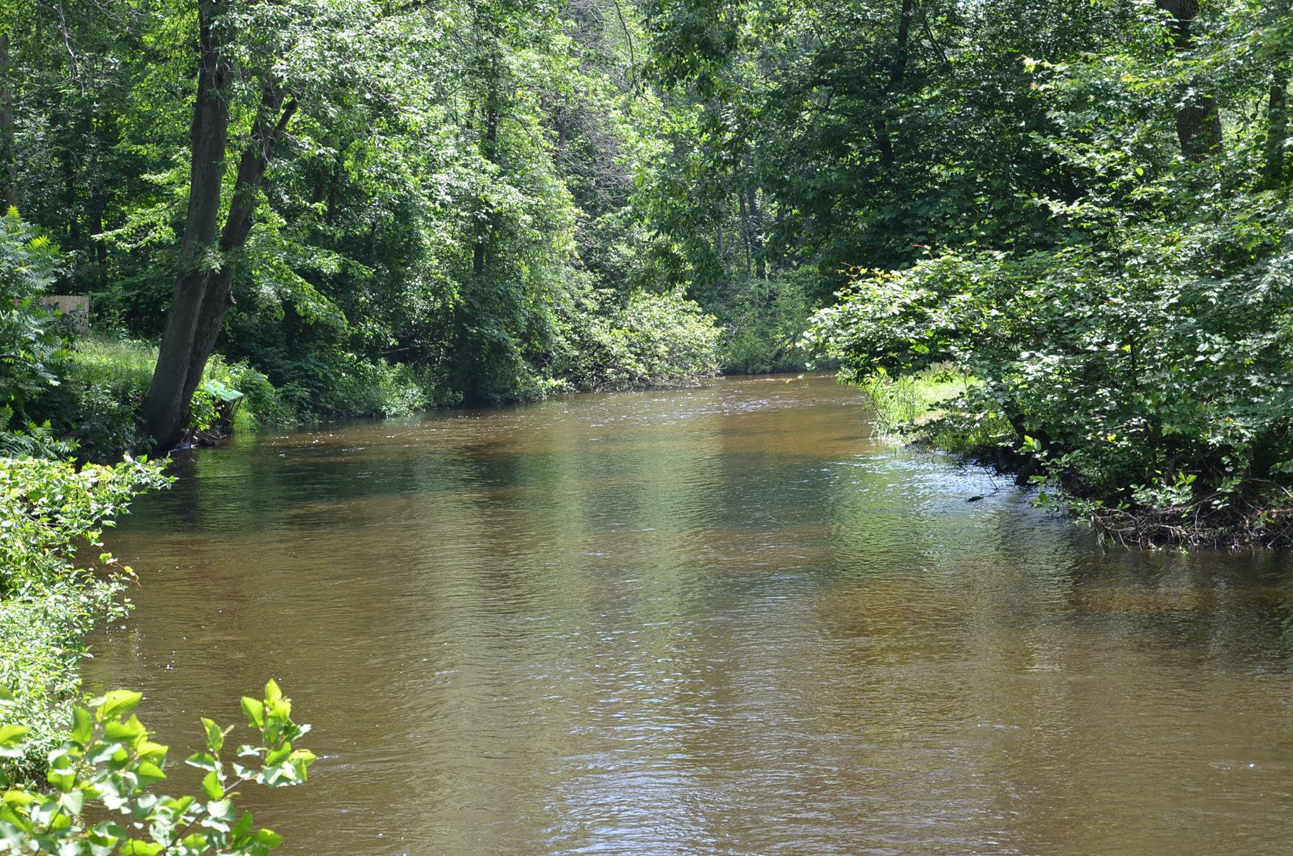 Michigan Trout Fishing - 2 Acre Building Site For Sale