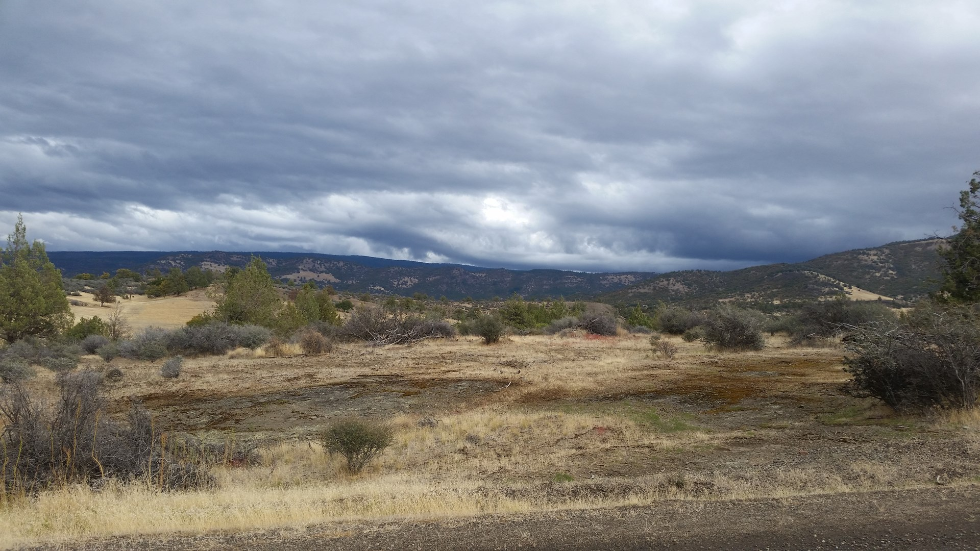 Peaceful 2.5 acres in Northern Ca for sale