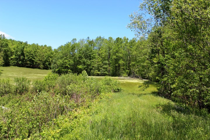 43.7  ACRES OF LAND WITH BASEMENT HOME IN PATRICK COUNTY, VA
