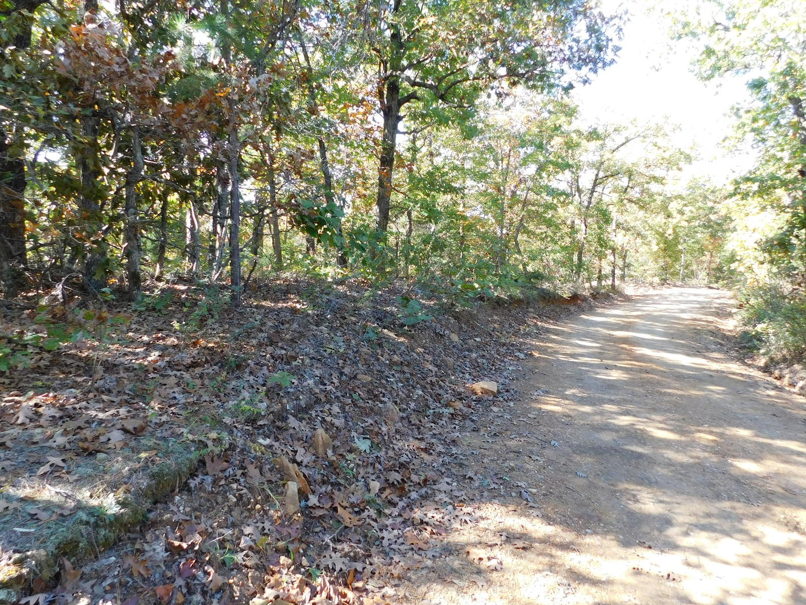 WOODED ACREAGE NEAR BUFFALO RIVER NATL PARK IN NEWTON CO, AR