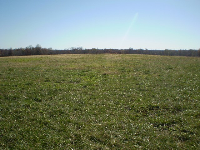Hunting Land, Tillable and Pasture near Chilhowee, MO