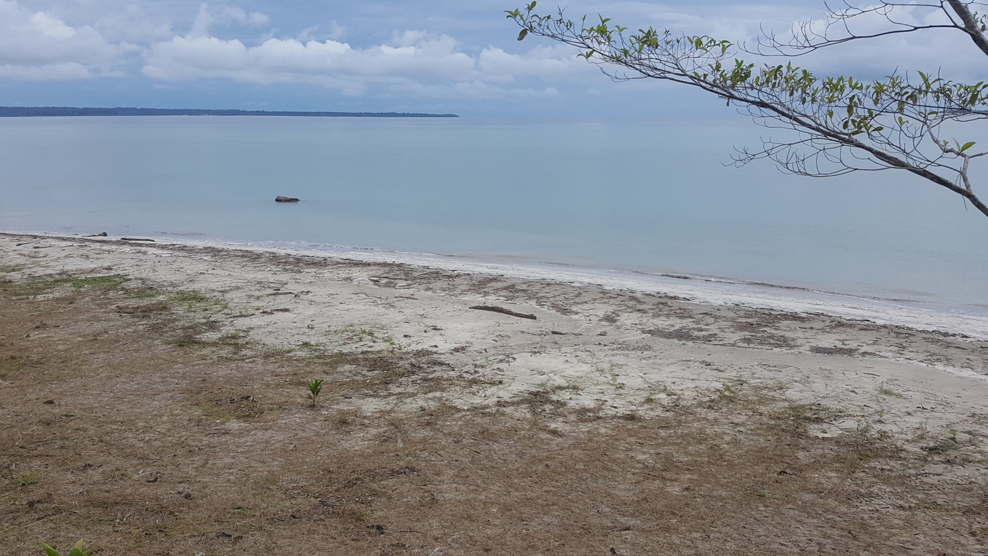 Affordable Bocas del Toro Sand Beachfront 3.3 acres Popa