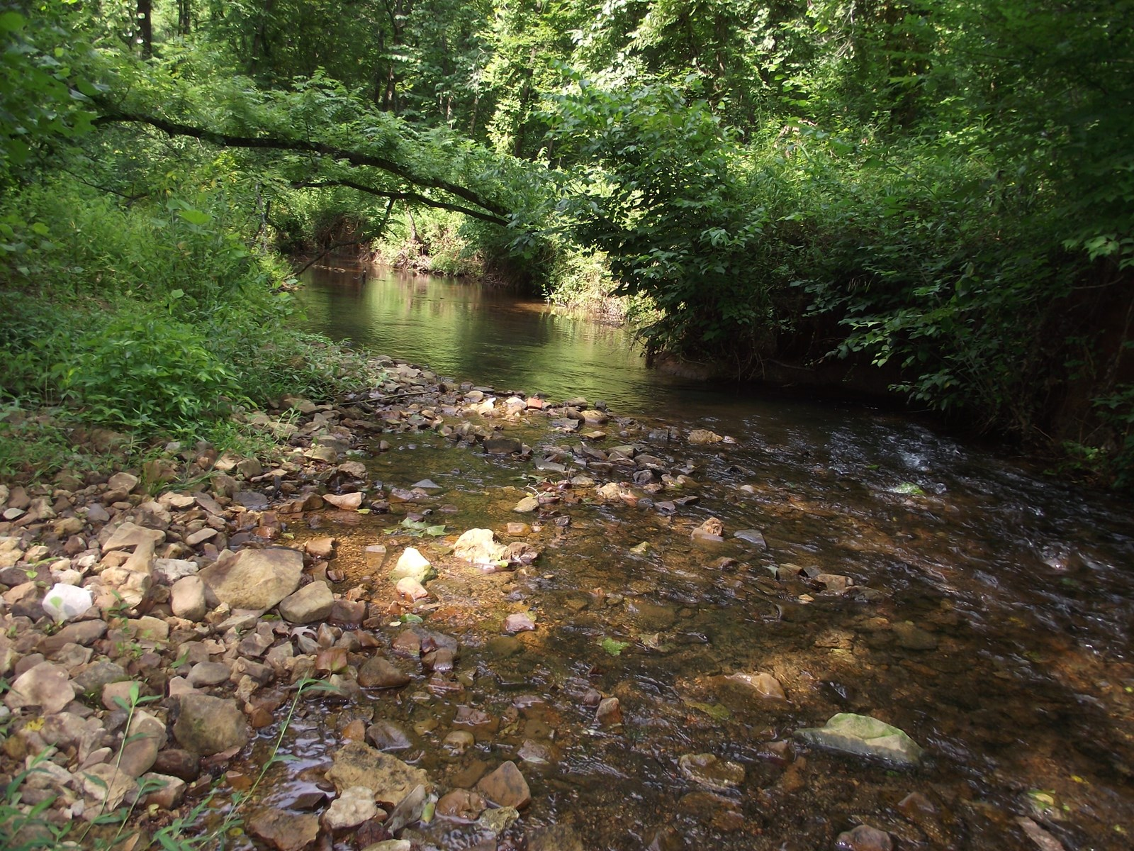 RECREATIONAL LAND IN TN W/ CREEK NO RESTRICTIONS HUNTING