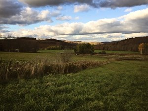 RURAL COUNTRY ACREAGE IN STEUBEN COUNTY, NY