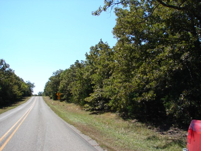Recreational Hunting Acreage For Sale in Arkansas