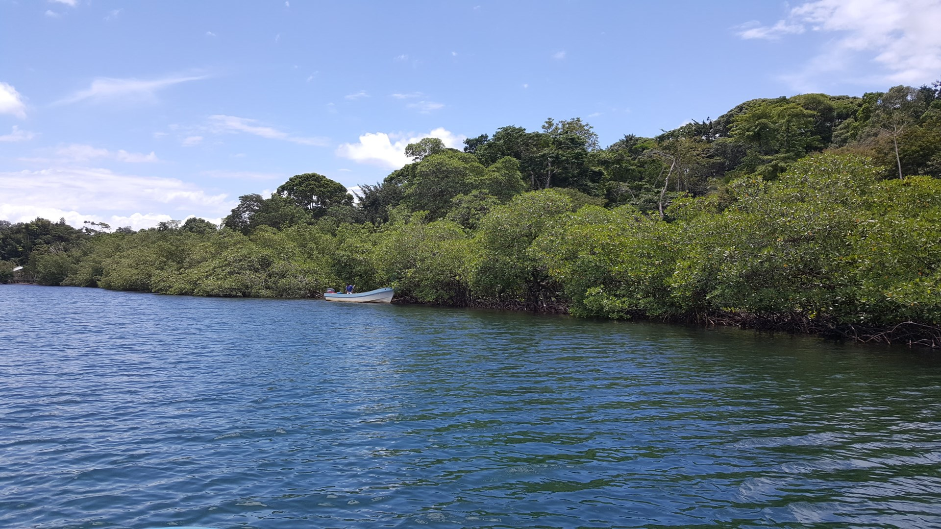 Beautiful Remote Land, Bocas del Toro, Panama
