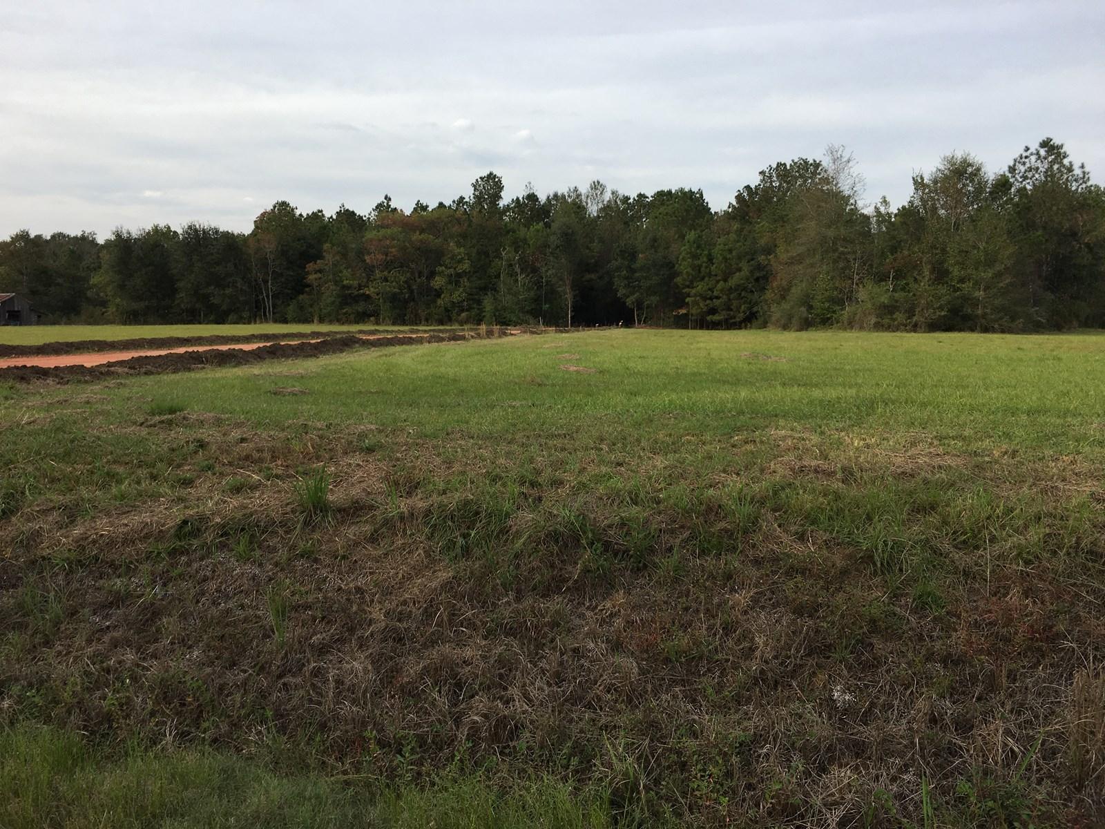 Rural Lot near City of Ponchatoula, Louisiana