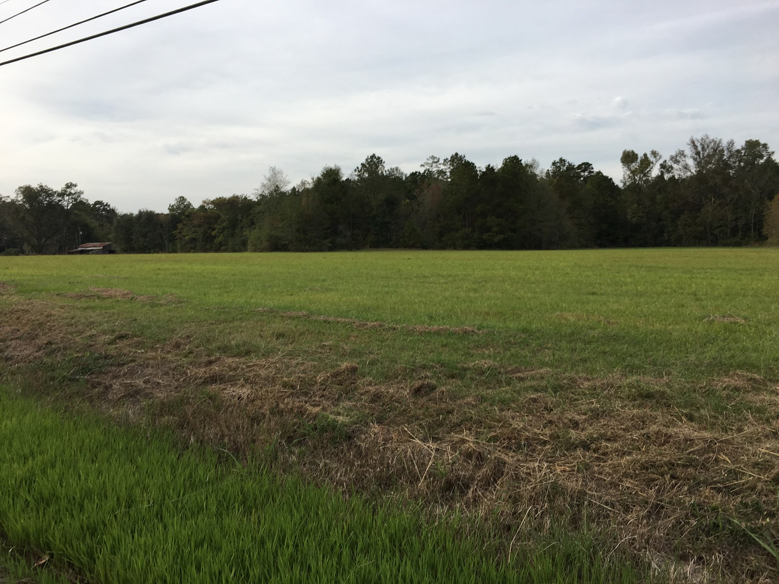 1.5 Acre Homesite outside of the City of Ponchatoula, LA
