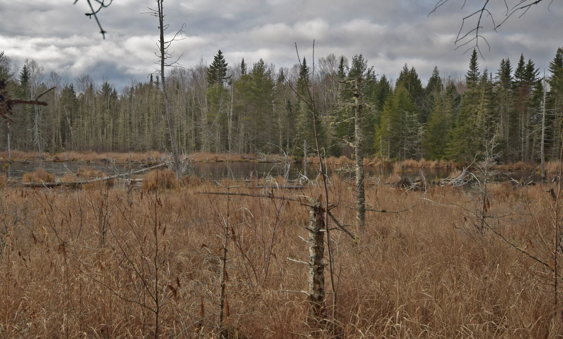 Maine Land for Sale in Greenfield