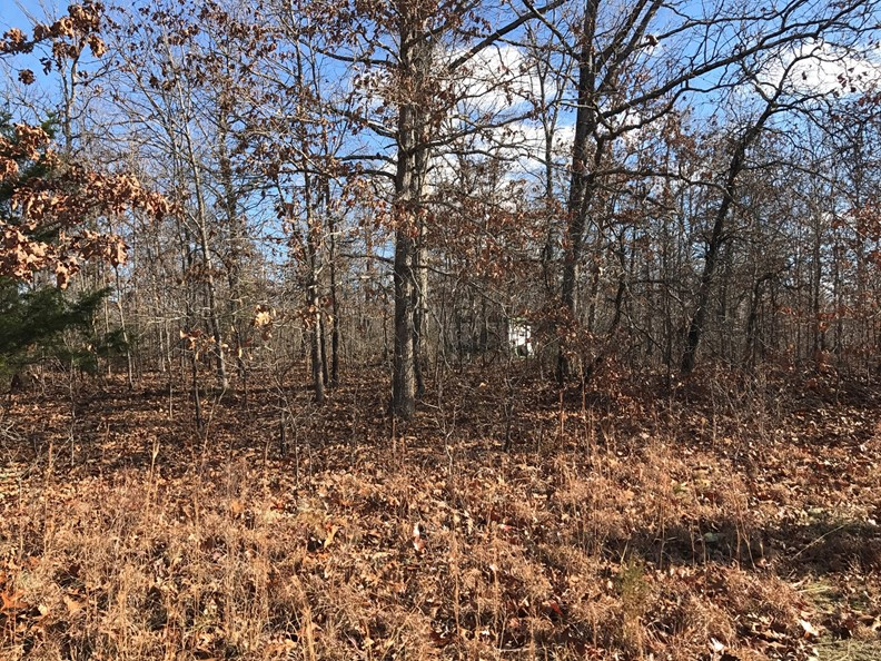 16.22 ACRES OF VACANT LAND NEAR ECHO BLUFF & CURRENT RIVER!
