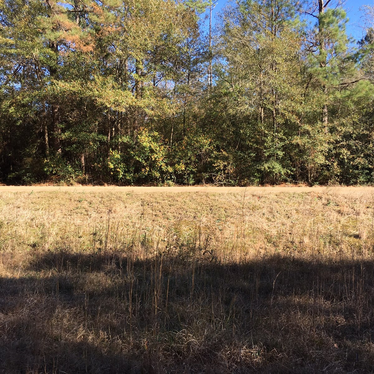 SPACIOUS 26 ACRE HOME SITE OR WEEKEND GETAWAY IN ST. TAMMANY