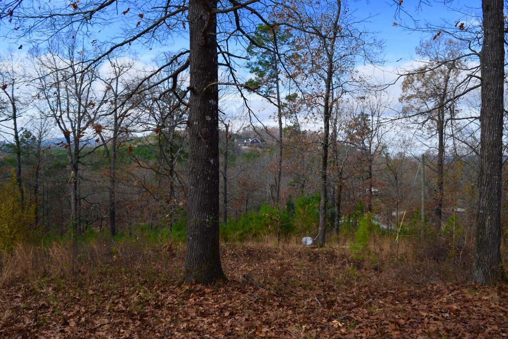 Land for sale/Acreage/Hilltop/Mountain/Glenwood Arkansas