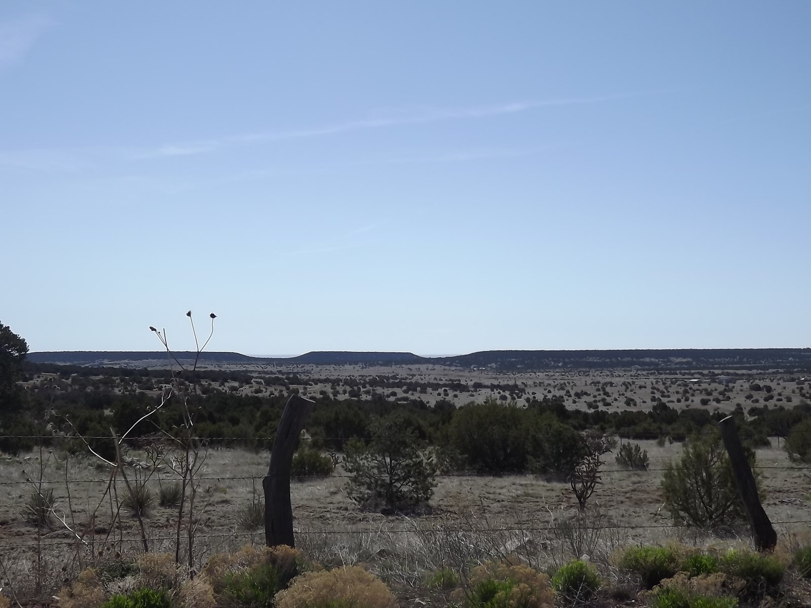 Manzano Mountain Land For Sale 50 Acres Near Tijeras NM