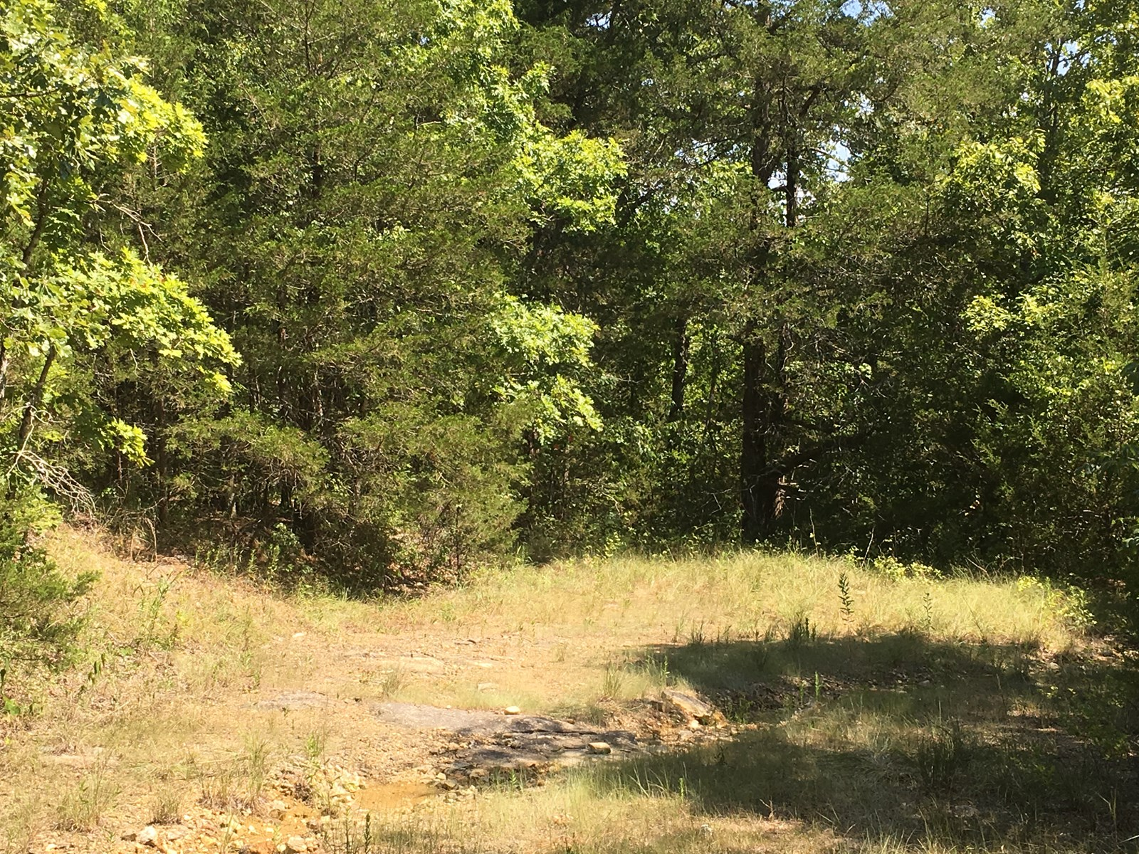 Arkansas Deer Hunting Land, Turkey Hunting for sale north AR