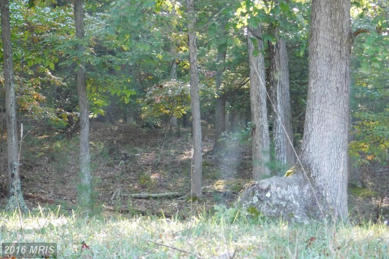 Land For Sale,  Augusta, WV