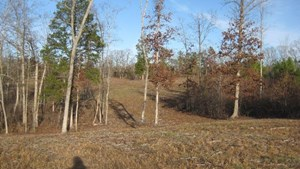 REDUCED PRICE! UNRESTRICTED 72 AC FARM TN, HUNTING /BUILDING