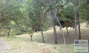 MOTIVATED SELLER FOR LOT IN ATLOS DEL MARIA