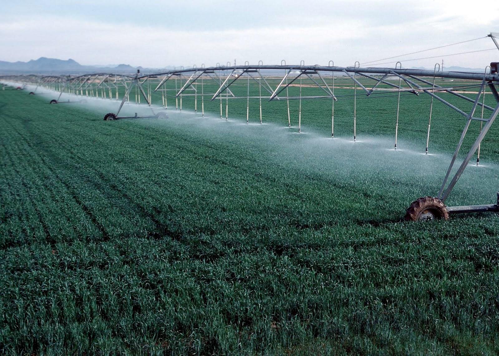 New Center Pivot 150 Acre Farm  Estancia Valley, NM For Sale