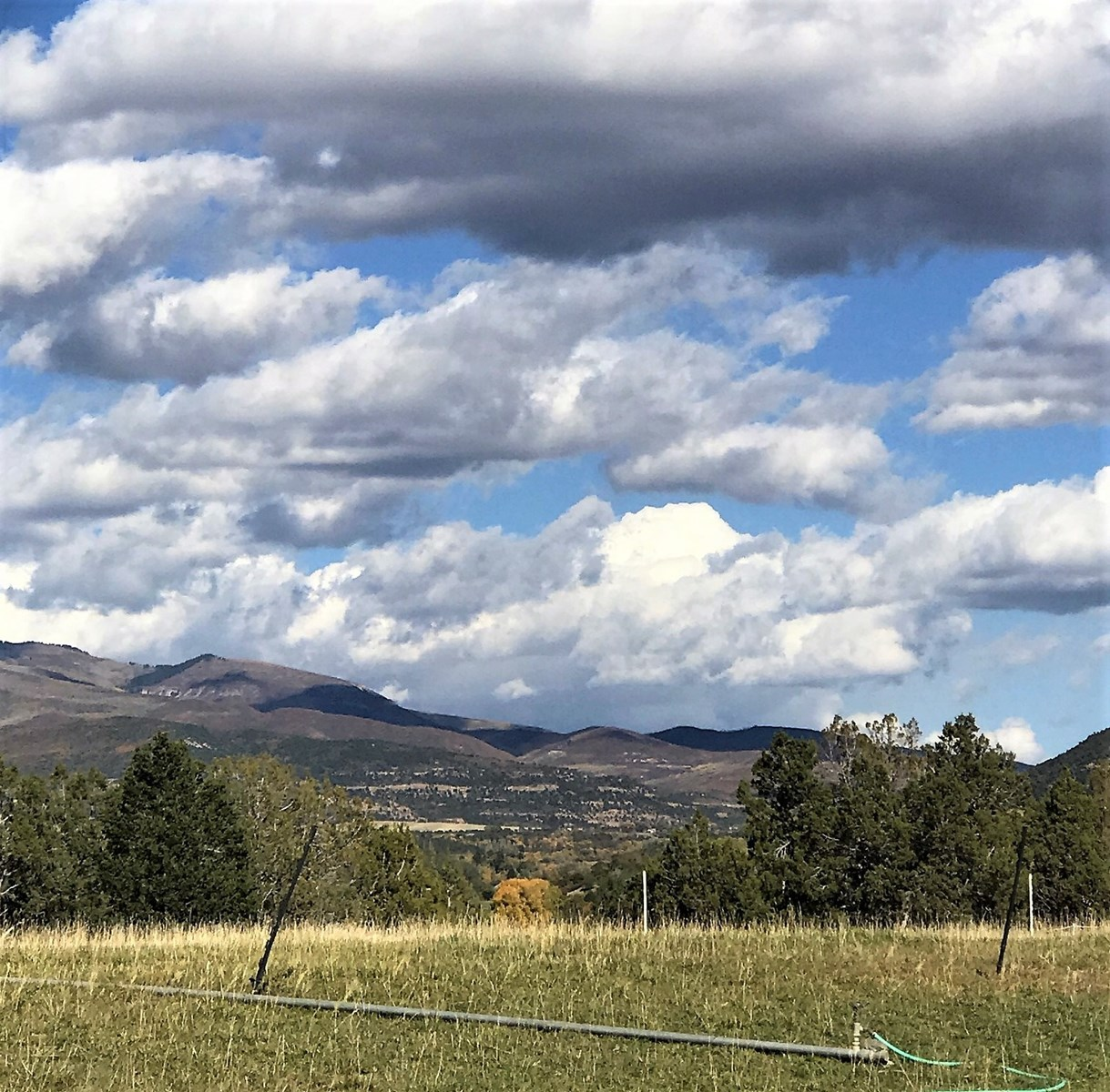 Vacant Land with Irrigated Acreage for Sale in CO
