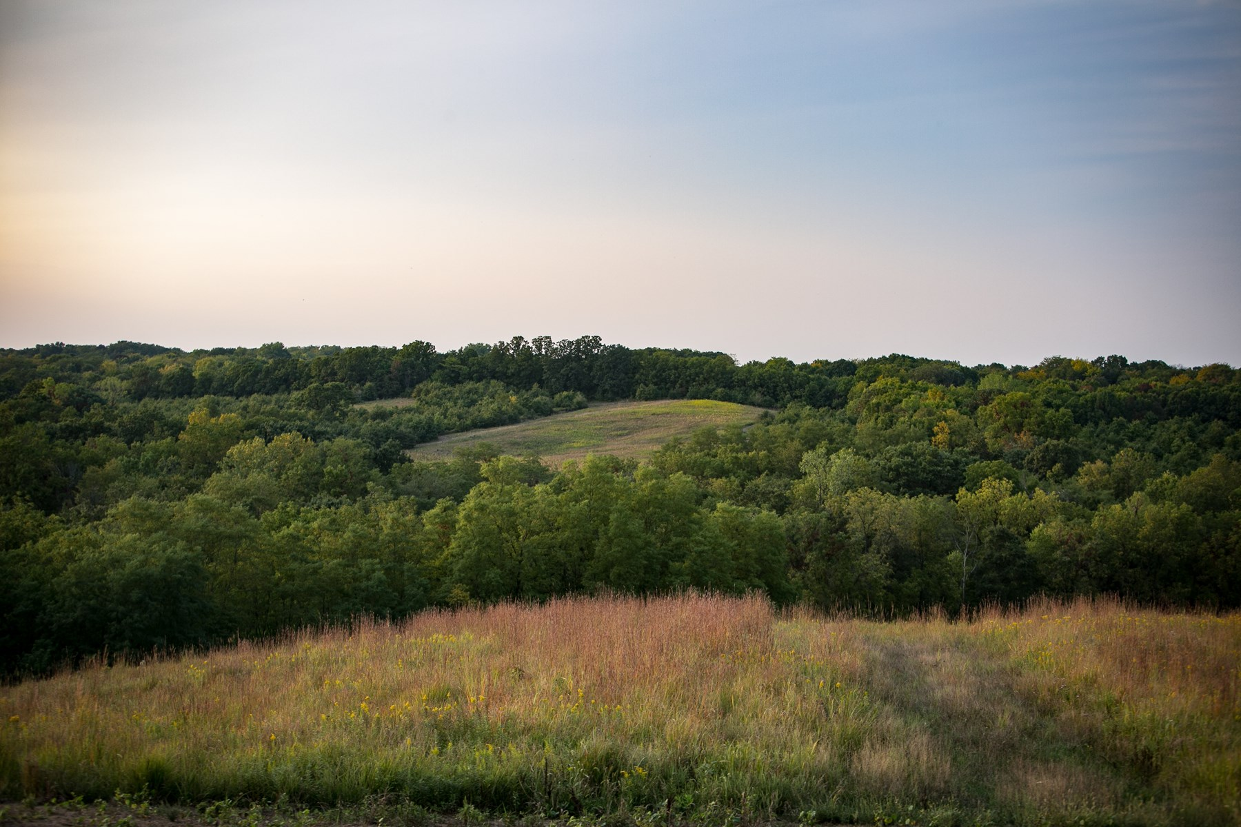 Southeast Iowa Hunting Farm with Great Income