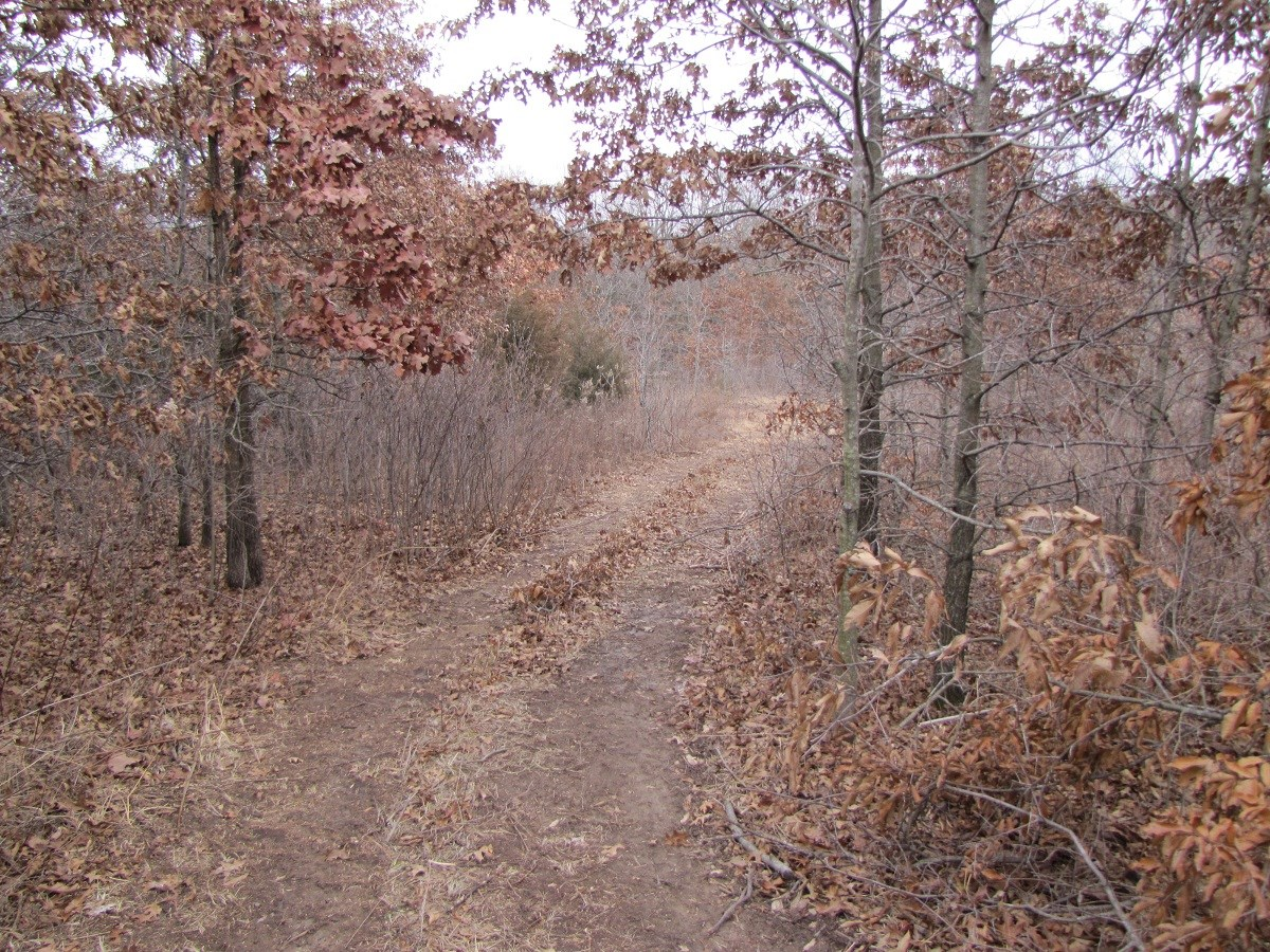 32 +/- Acres and Home Clark County, Mo.