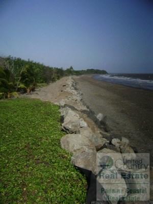FINCA AMAZONIA ALBINA GRANDE PANAMA BEACHFRONT HOMES 4 SALE