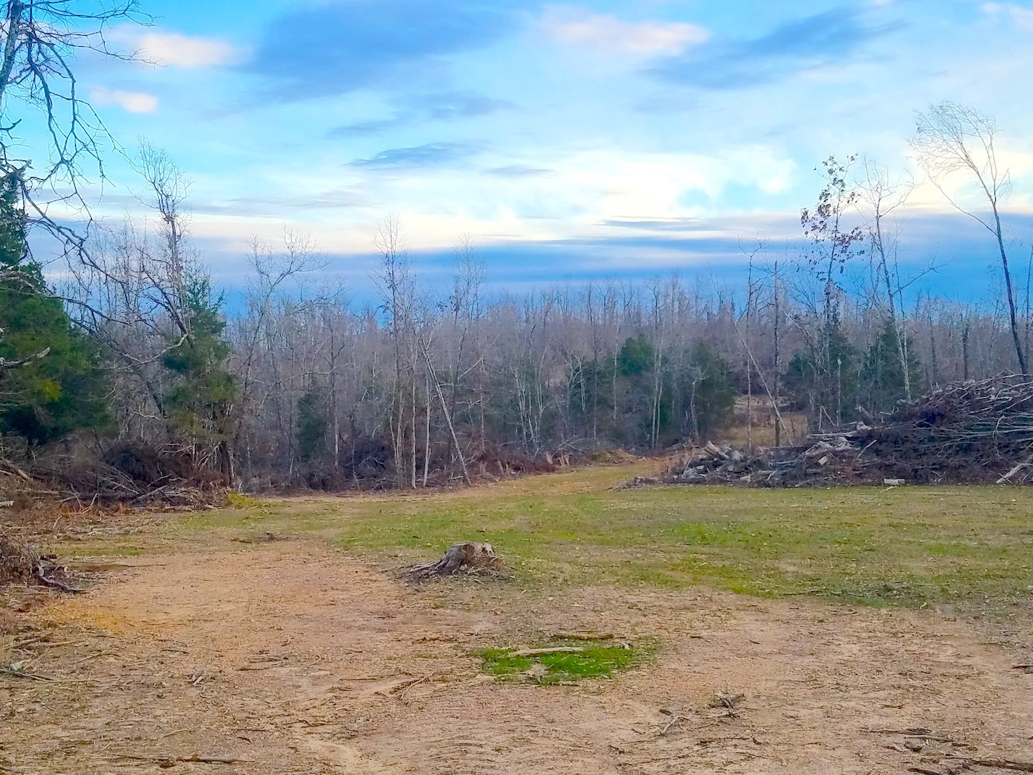 Wooded Acreage For Sale near Spring River, Arkansas