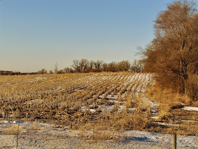 SOLD! $4280/acre