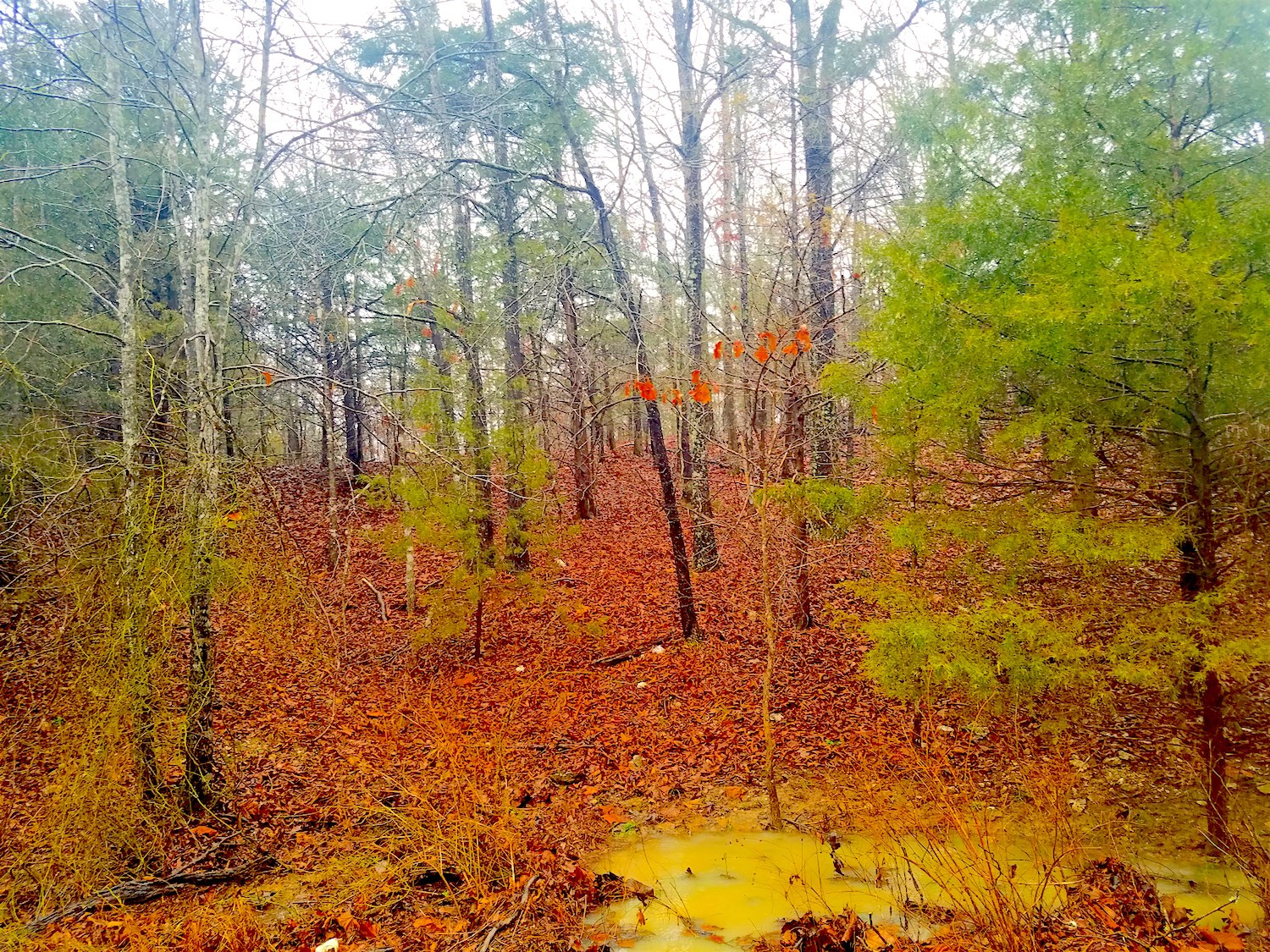 Recreational Property Outside of Salem, Arkansas For Sale