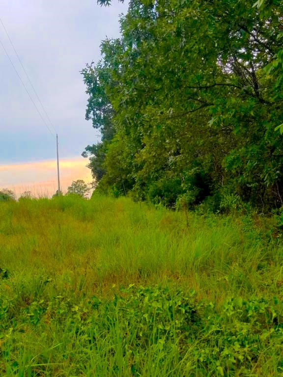 Acreage in Koshkonong, MO For Sale with Highway Frontage