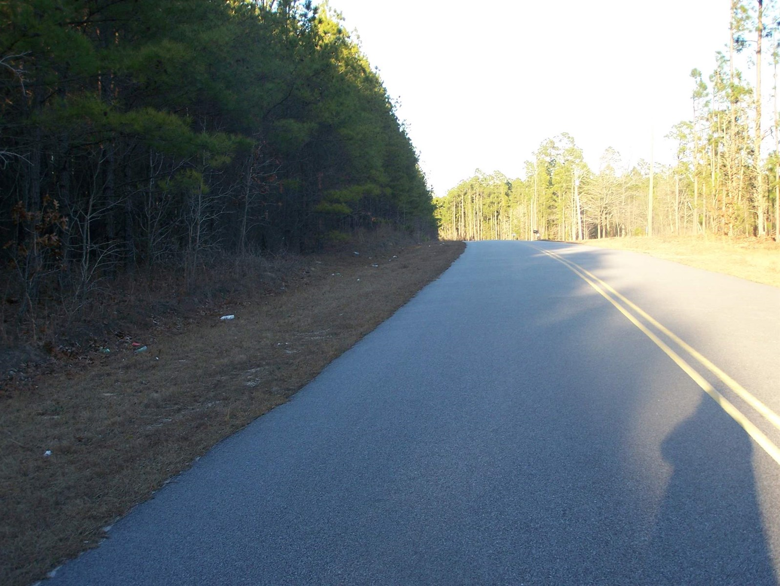 WOODED BUILDING LOT FOR SALE IN CASSETT, SC