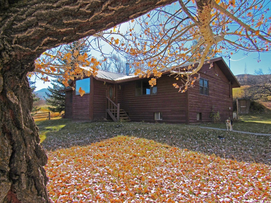 Colorado Mountain Cattle Ranch For Sale