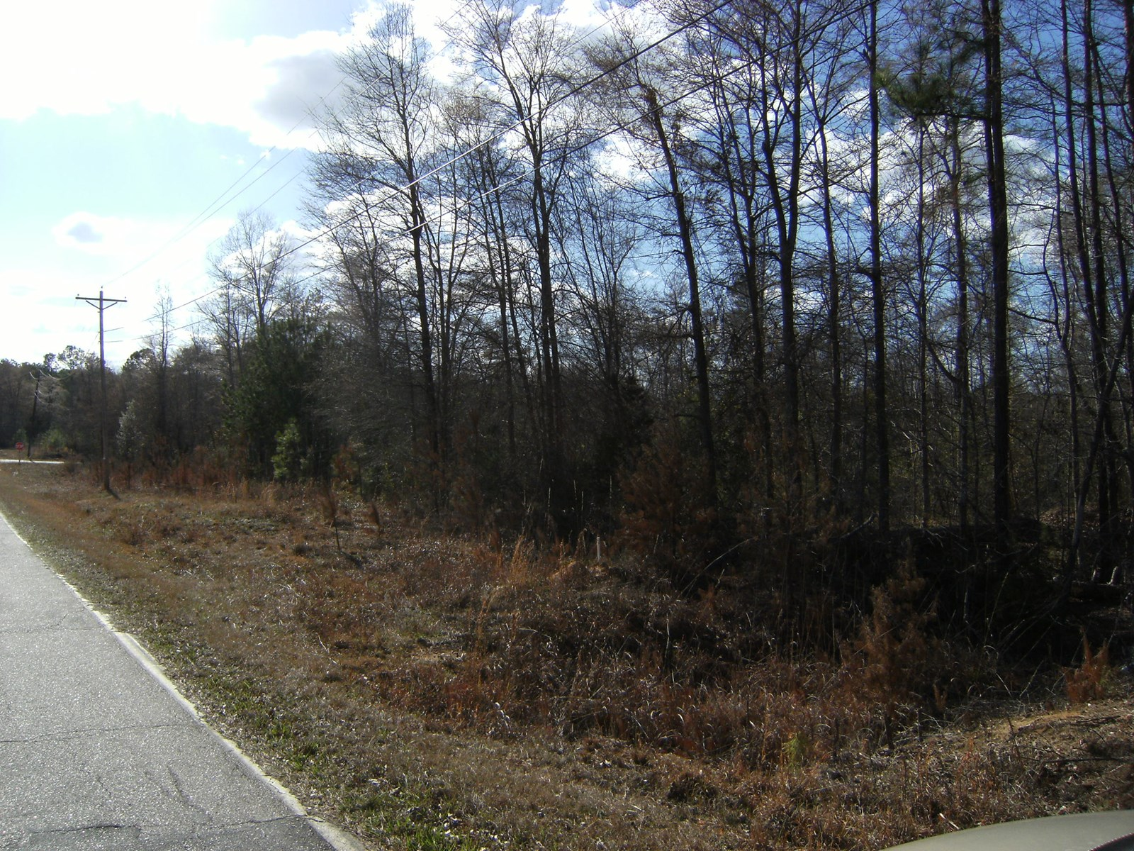 LARGE WOODED BUILDING LOT FOR SALE IN WINNSBORO, SC