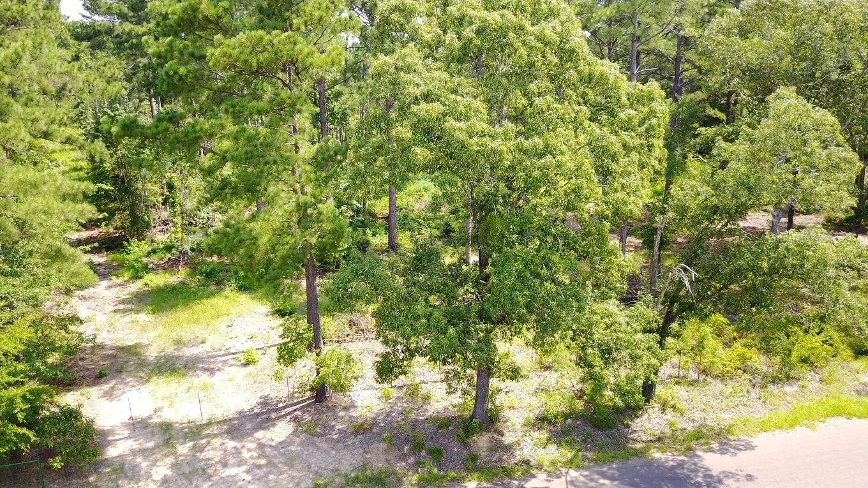 East Texas Acreage For Sale Bullard Texas