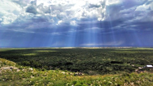 New Mexico Cattle and Trophy Hunting Ranch with Income
