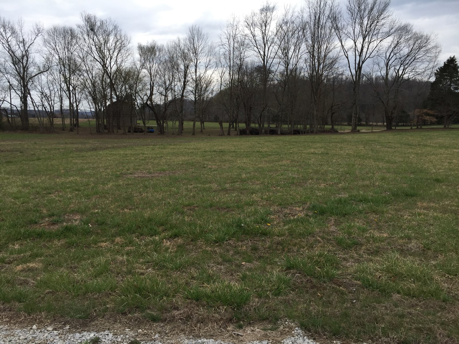 REDUCED TO SELL! Land for sale, Cumberland River, Albany, KY