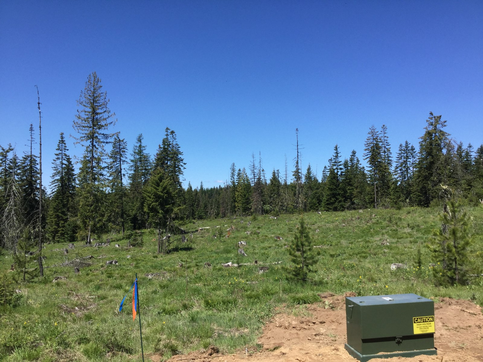 Acreage For Sale near Orofino, Idaho