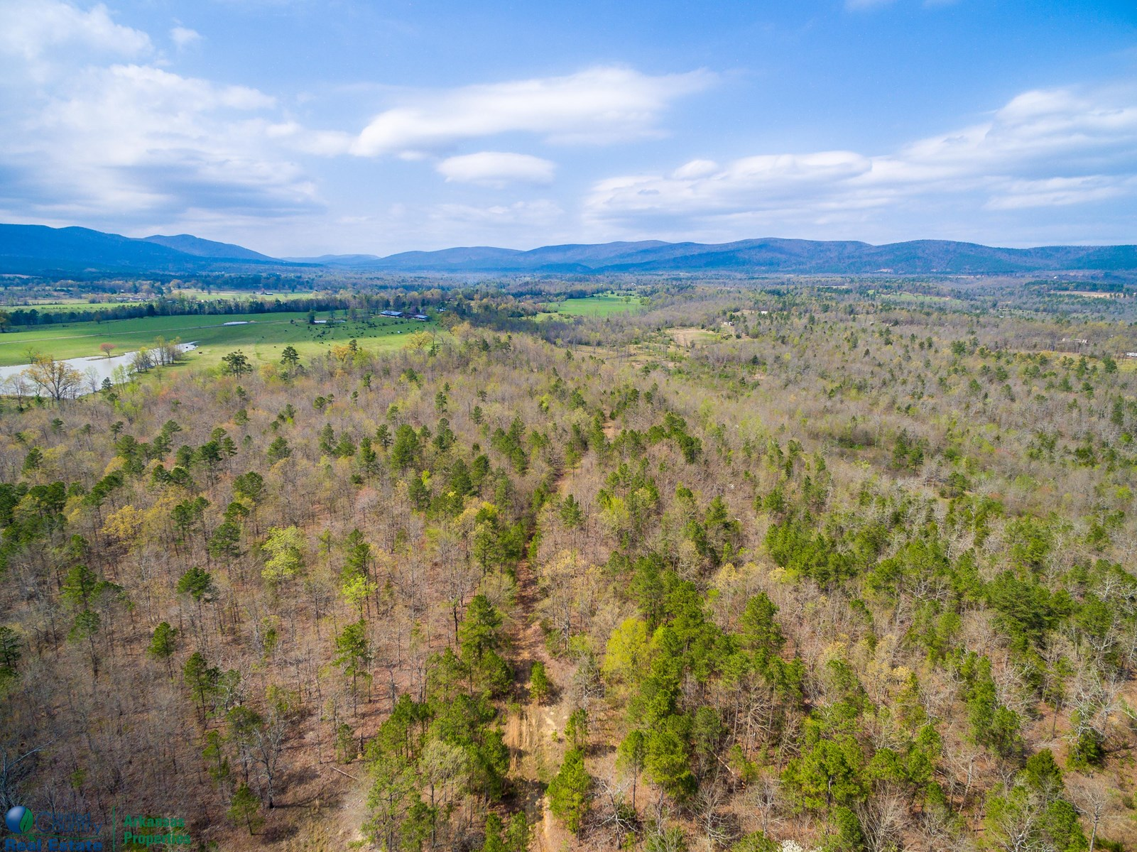 Timberland and Development Acreage in Polk County, Arkansas