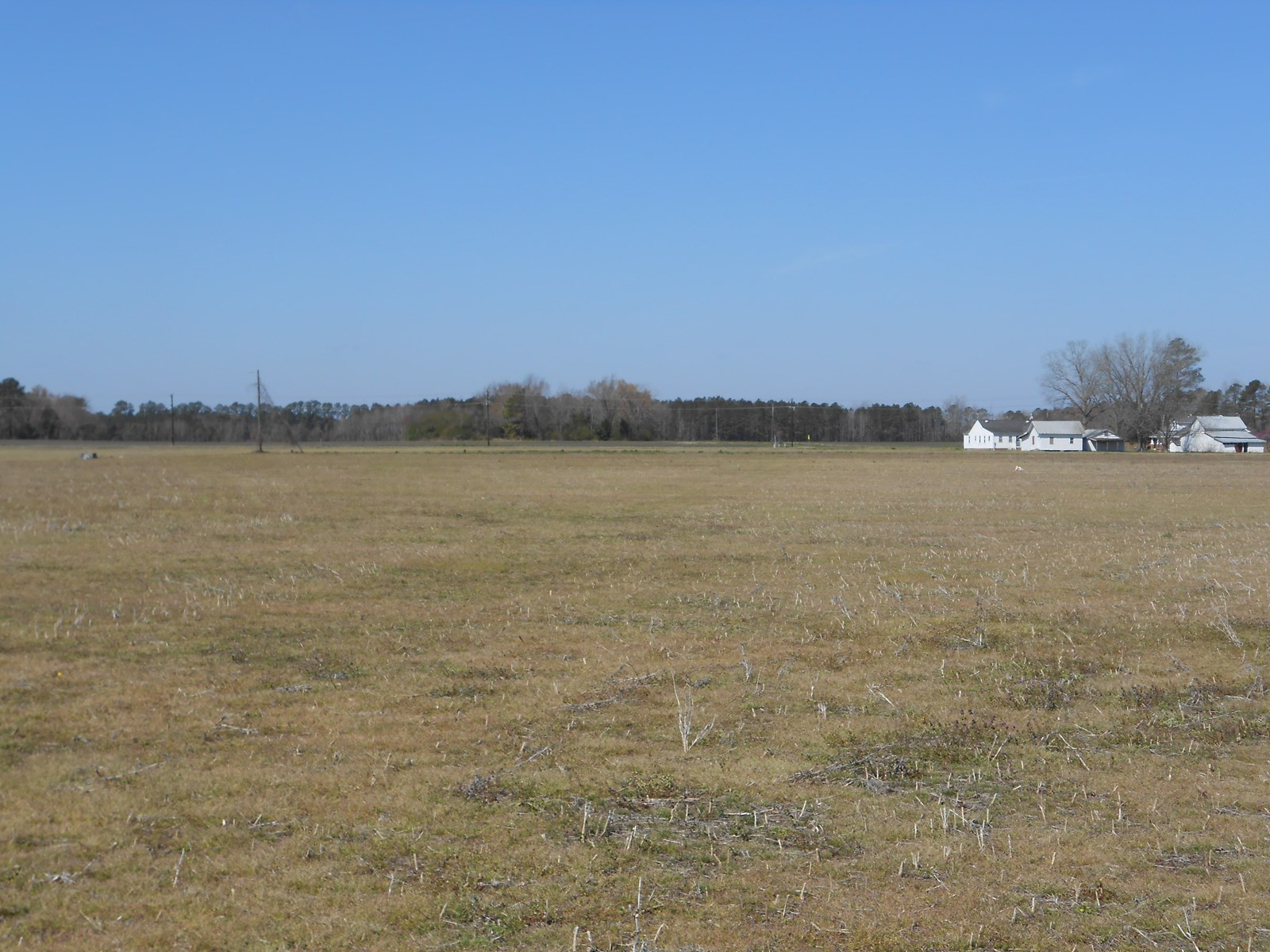 Farm For Sale in Beaufort Co., NC Great Property for Horses