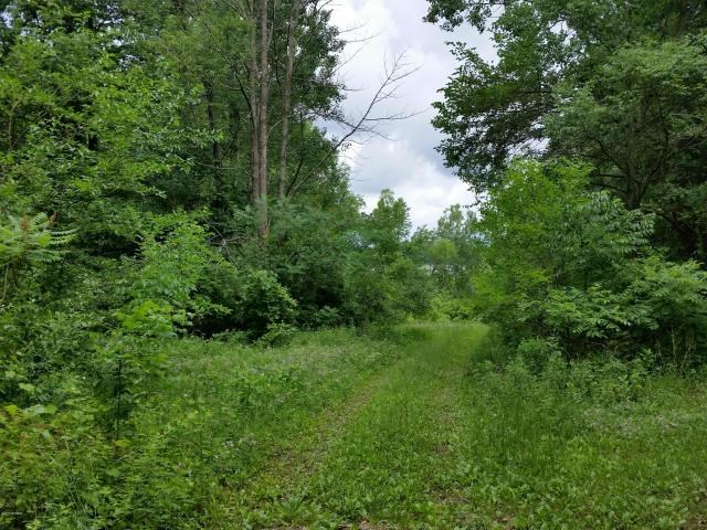 Fair Lake Acreage, View, Frontage - You can have it all here